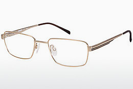 Eyewear Aristar AR16224 501 - Gold