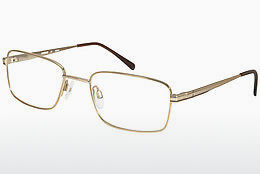 Eyewear Aristar AR16227 501 - Gold