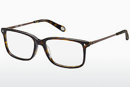 Eyewear Fossil FOS 6020 GAU - Brown, Havanna