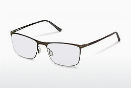 Eyewear Rodenstock R2590 C - Brown