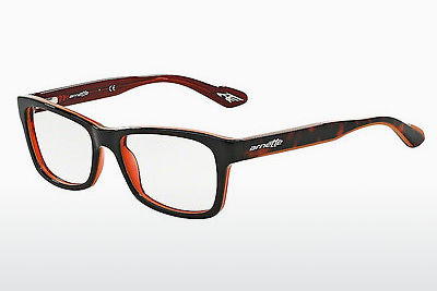 Eyewear Arnette AN7038 1102 - Brown, Havanna