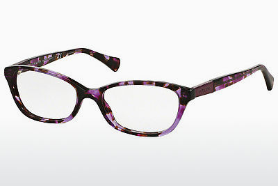 Eyewear Ralph RA7049 1135 - Brown, Havanna, Purple