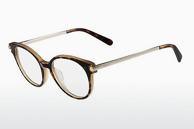 Eyewear Salvatore Ferragamo SF2764 245