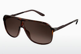 Ophthalmic Glasses Carrera NEW SAFARI KME/J6 - Brown, Havanna