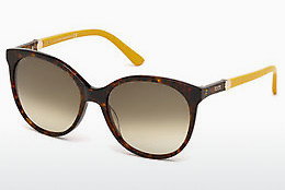 Ophthalmic Glasses Tod's TO0174 52F - Brown, Havanna