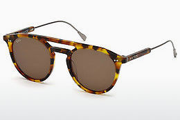 Lunettes de soleil Tod's TO0219 53J - Havanna, Yellow, Blond, Brown