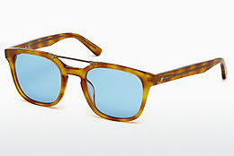 Lunettes de soleil Web Eyewear WE0166 A53 - Havanna, Yellow, Blond, Brown