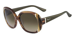 Salvatore Ferragamo SF674S 216 STRIPED BROWN