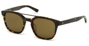 Web Eyewear WE0166 52E braunhavanna dunkel