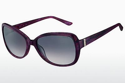 Ophthalmic Glasses Elle EL14852 PU - Purple
