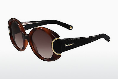Ophthalmic Glasses Salvatore Ferragamo SF811SL SIGNATURE 233 - Havanna, Black