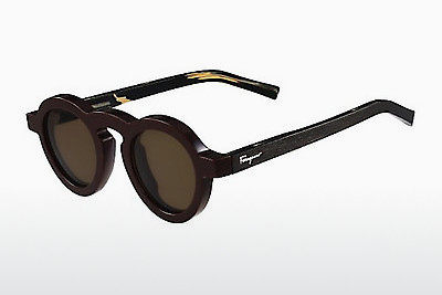 Ophthalmic Glasses Salvatore Ferragamo SF812S 604 - Brown