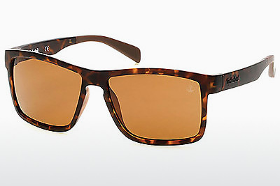 Ophthalmic Glasses Timberland TB9081 52H - Brown, Havanna