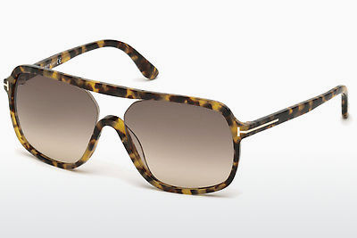 Lunettes de soleil Tom Ford Robert (FT0442 53F) - Havanna, Yellow, Blond, Brown