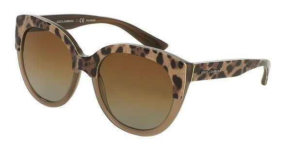 Dolce & Gabbana DG4259 2967T5 POLAR BROWN GRADIENTTOP MUD ON ANIMALIER