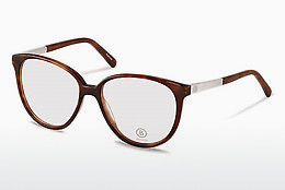 Eyewear Bogner BG508 B - Brown, Havanna