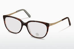 Eyewear Bogner BG511 B - Grey, Brown, Havanna, Gold