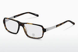Eyewear Bogner BG516 B - Brown, Havanna