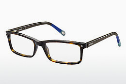 Eyewear Fossil FOS 6013 GXC - Brown, Havanna, Blue, Grey