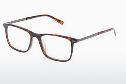 Eyewear Police VPL133 0714 - Brown, Havanna