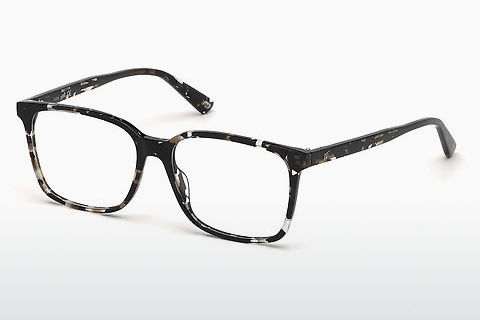 Lunettes design Web Eyewear WE5292 055