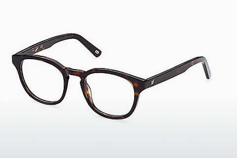 Lunettes design Web Eyewear WE5346 052