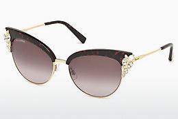 Ophthalmic Glasses Dsquared DQ0200 52T
