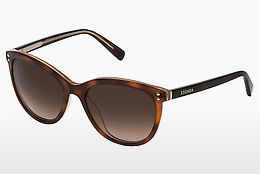 Ophthalmic Glasses Escada SES442 09TA - Havanna