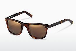 Ophthalmic Glasses Rocco by Rodenstock RR322 H - Black, Brown, Havanna
