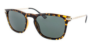 HIS Eyewear HP78108 3 green POLdemi brown