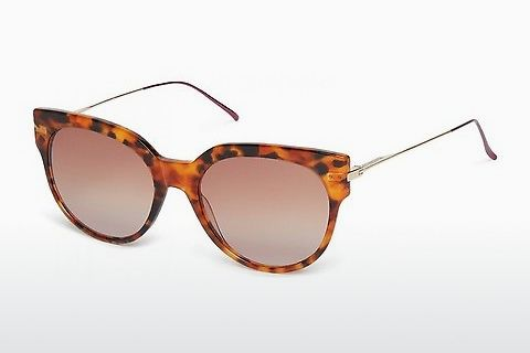 Lunettes de soleil Scotch and Soda 7005 104